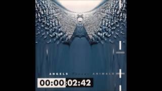 Front 242 - ANGELS Versus ANIMALS (1993) FULL ALBUM