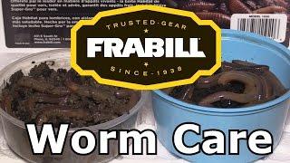 Setting Up a Frabill Habitat Worm Storage System