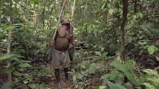 Human Planet | Honey Gatherers | Eden Channel