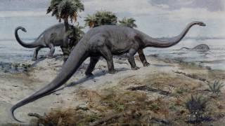 Массовые вымирания фанерозоя (рассказывает палеонтолог Екатерина Тесакова)