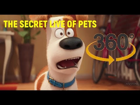 THE SECRET LIFE OF PETS PICTURE 360 funny MOVIES 360 FOR KIDS