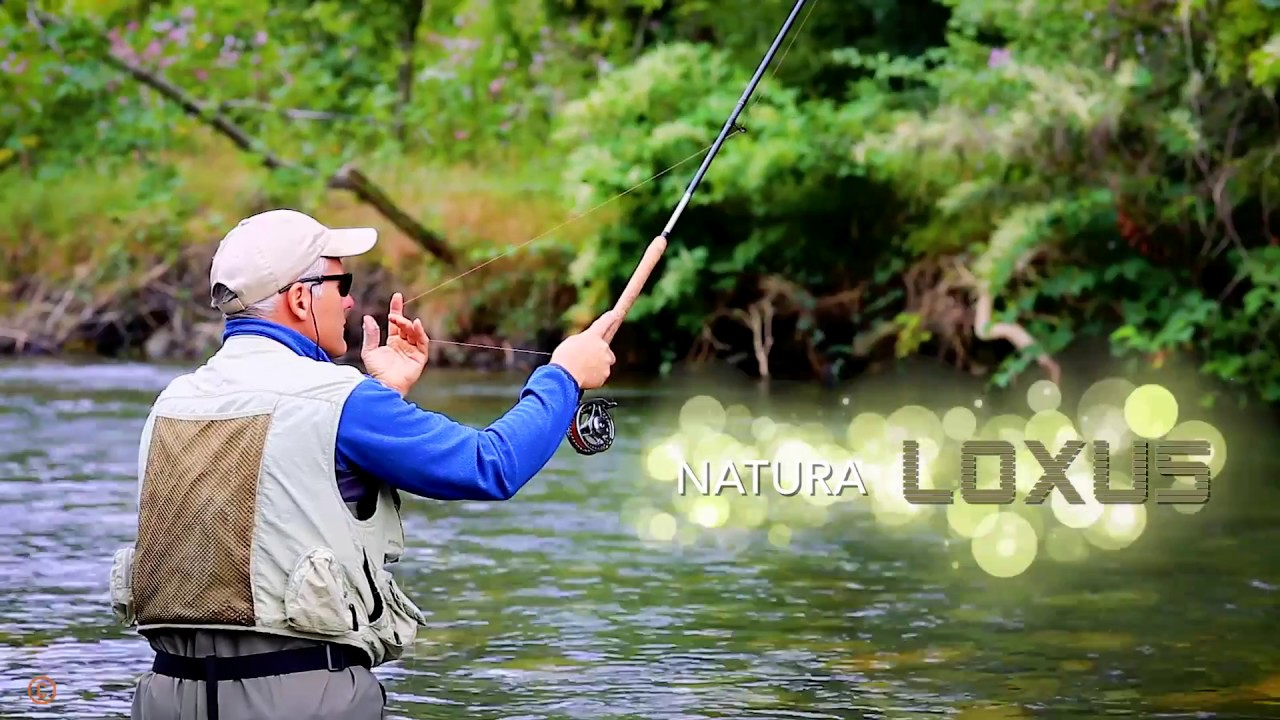 video peche truite appat naturel