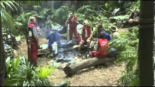 Amy was a bone of contention in I'm A Celebrity camp
