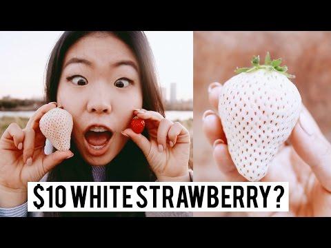$10 Japanese White Strawberry. 🍓🤔
