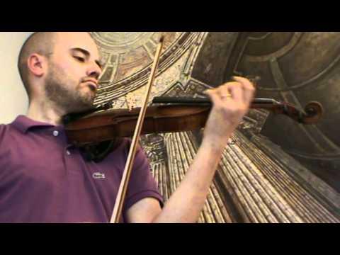 Antique Austrian violin Johann Sattler 1876 # 720