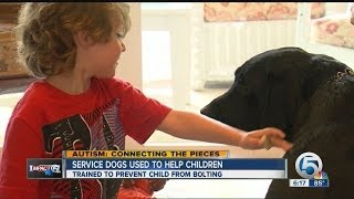 Service dogs can help families with children on the autism spectrum(They are trained to stop children from leaving., 2014-06-25T22:39:41.000Z)