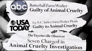 Consumer Warning: Butterball Turkey Guilty of Cruelty to Animals