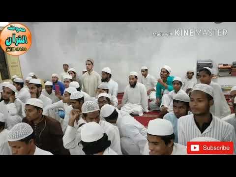 Hazrat molana Qari Shafiq urrahman sb Qirat darul uloom ashrafya (deoband)