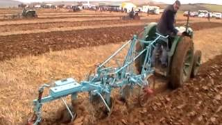 Fordson N and Trailing Ploughs at the 2016 Memorial Ploughing Match