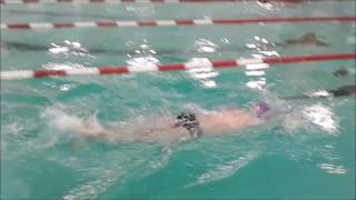 Front Crawl vs Butterfly