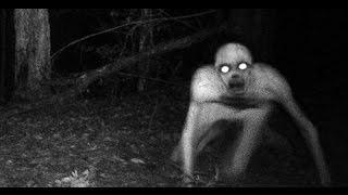 (2016)ЧАСТЬ 1 Загадочные существа попавшие в кадр (нло,рейк,привидения,ангелыи демоны,гномики,(, 2016-02-04T12:32:14.000Z)