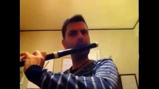 J. J. Quantz - Menuet n. 59 Danilo De Luca, flute traversiere.