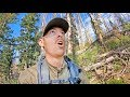 Download Mp3 SEEING ELK for THE FIRST TIME!   Public Land Archery Hunting