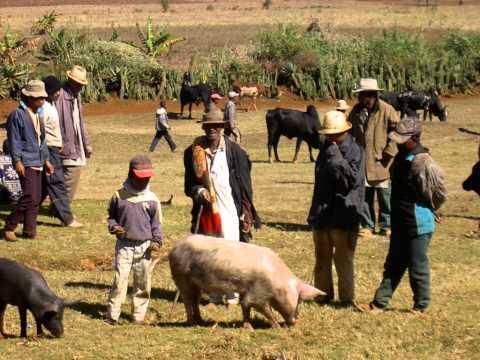 Région d'Antsirabé - Madagascar