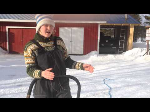 How to drive a sleigh Finnish