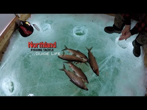 A Fishing Guides Life In Green Bay, Wisconsin