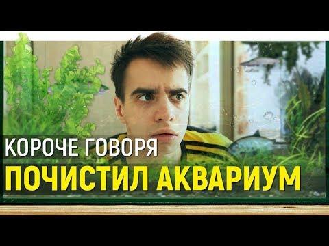 КОРОЧЕ ГОВОРЯ, ПОЧИСТИЛ АКВАРИУМ - Видео онлайн