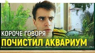Download КОРОЧЕ ГОВОРЯ, ПОЧИСТИЛ АКВАРИУМ Mp3 and Videos