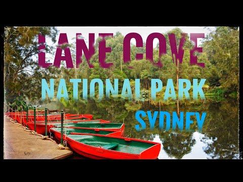 Lane Cove National Park - Sydney