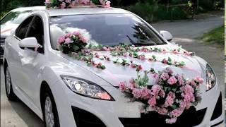 Свадебные машины в Таджикистане / Видео