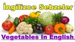İngilizce Sebzeler - Vegetables Names For Children - İngilizce Dersleri Ve Konu Anlatımı