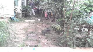 refinery29 video