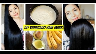 DIY Banacado Deep Conditioning Hair Mask For Dry Scalp, Damaged Hair, Split Ends & Frizzy Hair