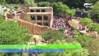 서울어린이대공원 2012 어린이날 풍경썸네일
