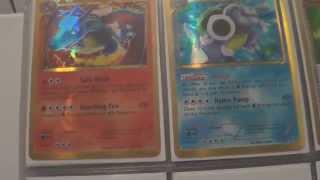 Complete Set: Pokemon Plasma Storm