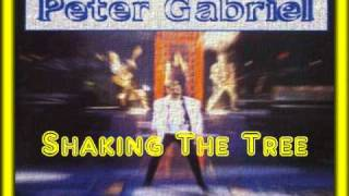 Peter Gabriel- Shaking The Tree