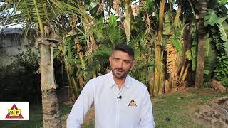 Leandro Miranda MP Representações