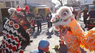 Kei Lun Lion Dance - Teance Performance 2/12/2011 - The Grand Finale