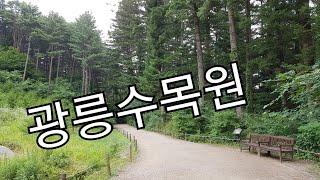 경기도 포천 국립수목원(광릉수목원) Korea Nati…