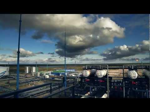 Развитие и поддержка сотрудников в компании «Газпром нефть