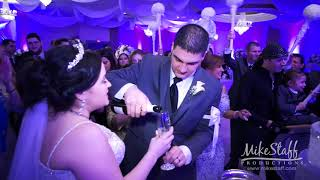 Wedding Video - Farmington Hills Manor, Farmington Hills Michigan - Stefanie and Layth