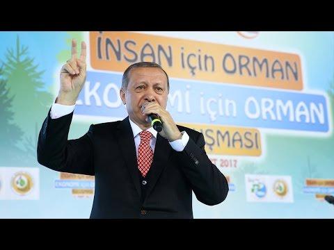 German new president warns Erdogan harming Turkish success in Europe