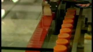 Phim | Nhà máy sản xuất kính an toàn Hồng Phúc | Nha may san xuat kinh an toan Hong Phuc