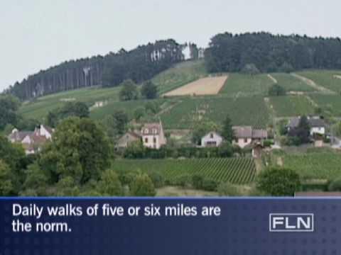 Burgundy, France-Fine Living