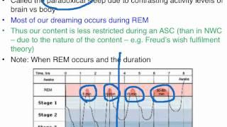 REM and NREM sleep - VCE Unit 3 Psychology