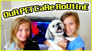 🐶 DAILY PET CARE ROUTINE 🐱 LAZY VLOG | THE PARENTS ARE SICK! | SMELLY BELLY TV