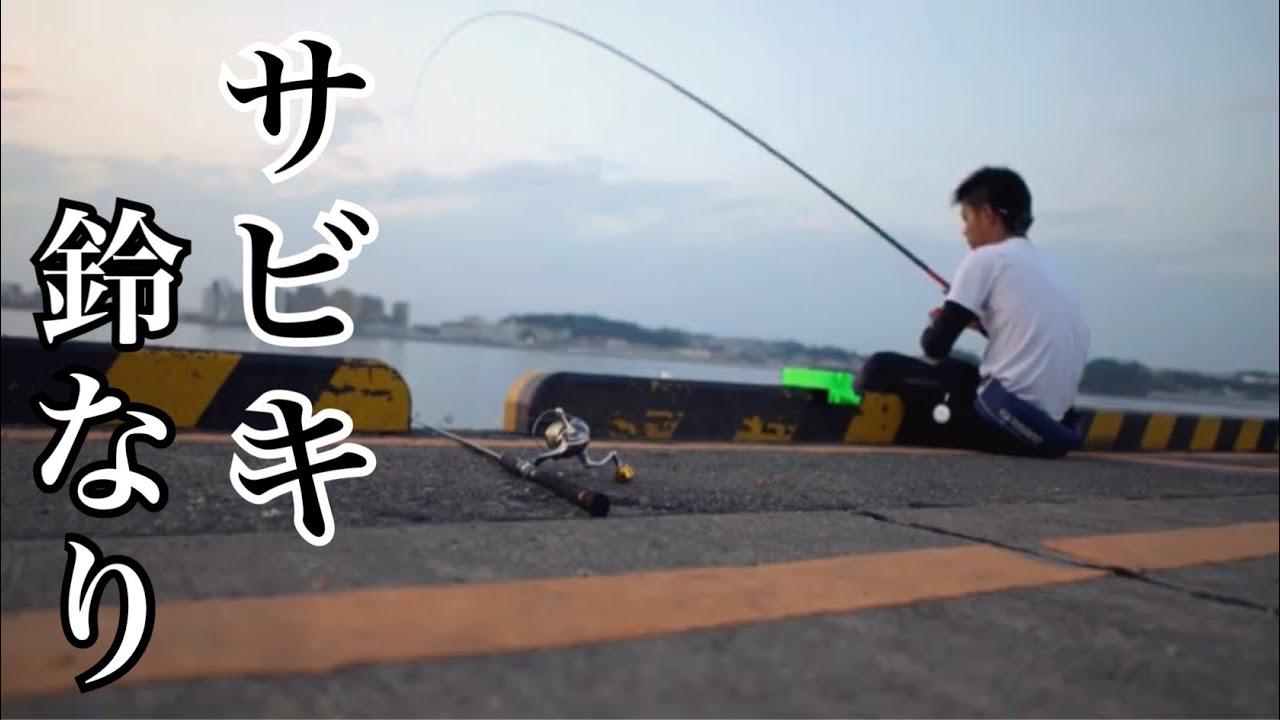 サビキ釣り爆釣!投げサビキにしてみるといい魚が釣れた!
