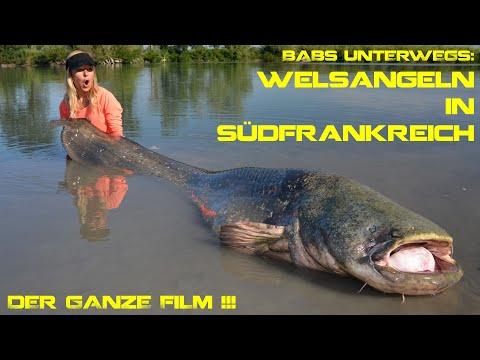 Welsangeln in Südfrankreich *GANZE DVD!!!*