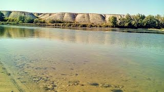 БАЗА ОТДЫХА ДОН-ВЕРТЯЧИЙ-Турбаза-дома рыбалка лес на берегу-недорого-КАНАЛ