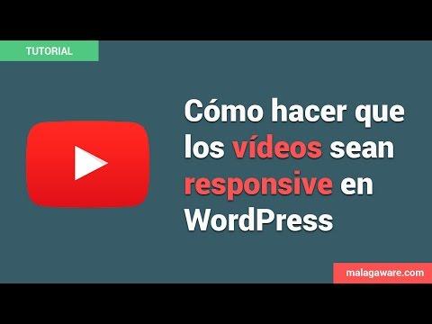 Cómo hacer que los Vídeos de Youtube sean Responsive en WordPress