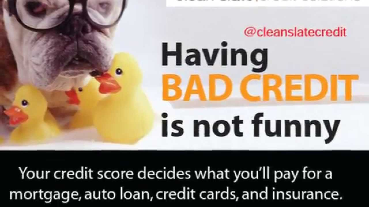 Clean Slate Credit Solutions - (866) 538-9548 - Credit ...