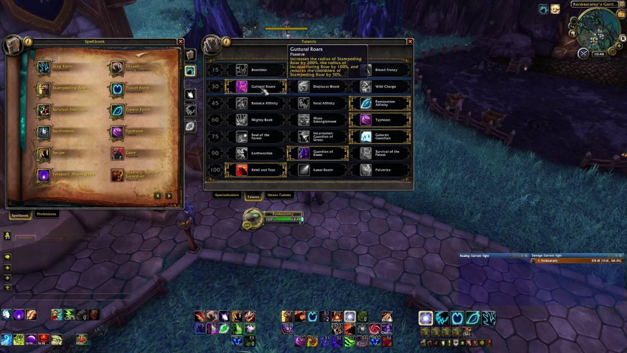 Druid raid guide