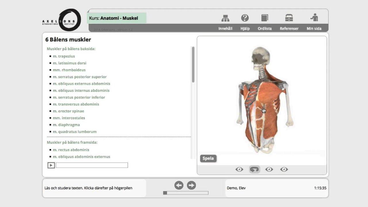 Groß Anatomie Online Kurse Zeitgenössisch - Anatomie Ideen - finotti ...