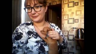 Vlog :-)едем в город, рынок,У МЕНЯ ЩЕНОК!