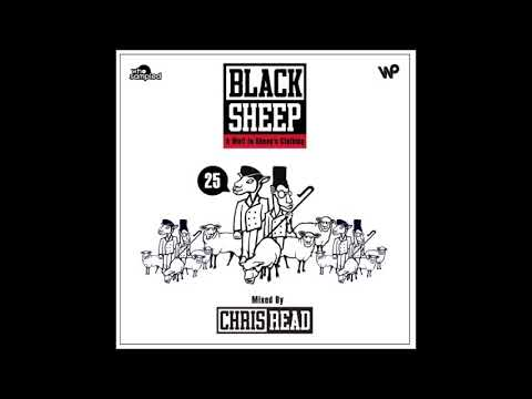 Black Sheep  A Wolf In Sheeps Clothing  25th Anniversary Mixtape
