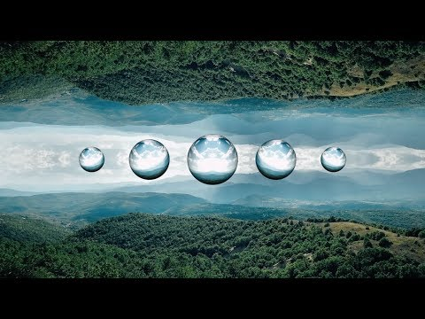 Bassnectar & Dorfex Bos - Horizons ◈ [Reflective]